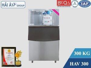 HAV-300