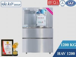 may-da-vay-hai-au-HAV-1200